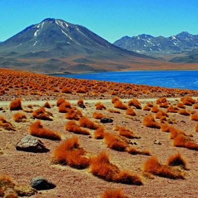 Volcán Miscanti