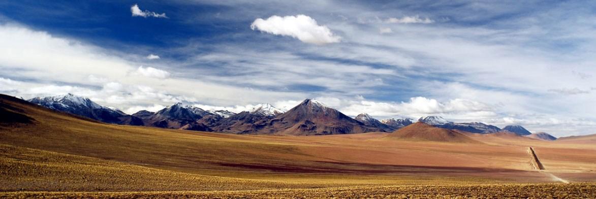 Altiplano de Atacama