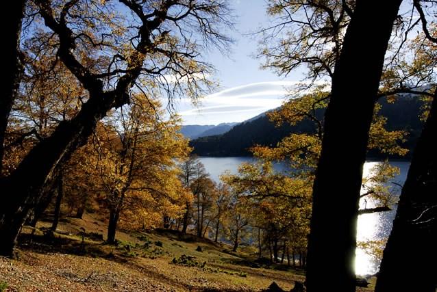 Lago Icalma