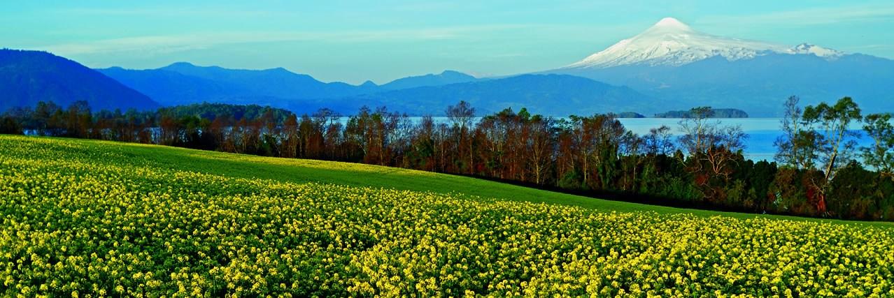 Lago Calafquén y Volcán Villarrica